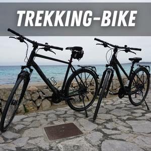 Trekking & Cross Bikes